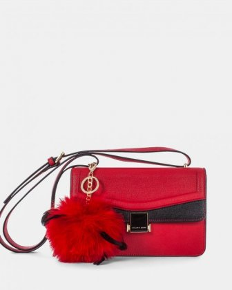 Scale – Leather-like flap bag - red - Céline Dion